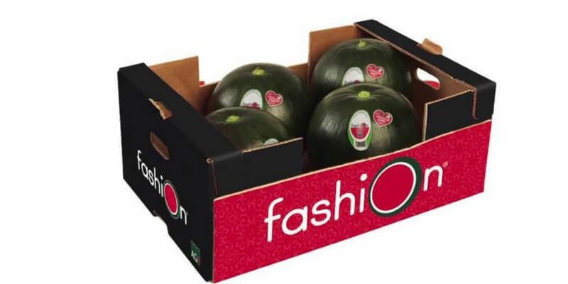 inaugurada la campaña Fashion